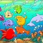 Fish 20pcnt 96dpi